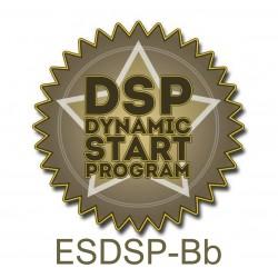 """DSP - Kit """"B"""""""